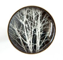 nest-scrub-ring-r-bwtree-111